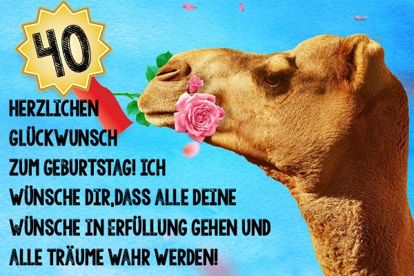 Tierisch schöne Grüße zum 40. Geburtstag
